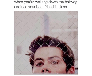 school, teen wolf, and friends image
