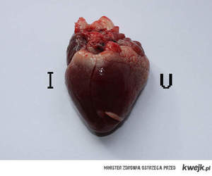 heart, I Love You, and real heart image