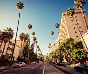 hollywood, la, and city image