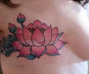 fiori, rosa, and fiore di loto image