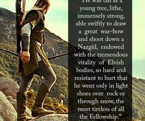 Legolas, lord of the rings, and the hobbit image