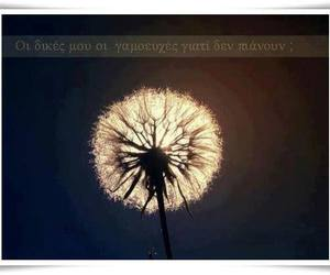 flower, photography, and greek quotes image