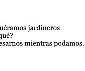 amor, flor, and kiss image