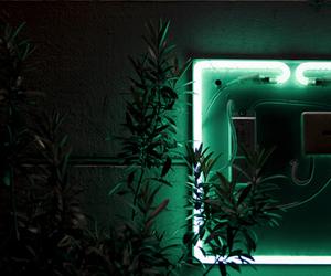 header and green image