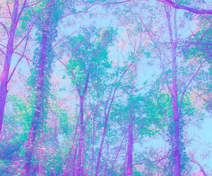forest, pastel, and tree image