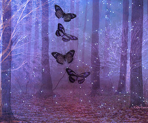 butterfly, forest, and lila image