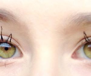 eyelashes, eyes, and face image