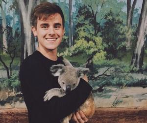 connor franta, Koala, and cute image