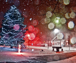 light, christmas, and snow image