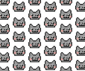 cat, cats, and wallpaper image