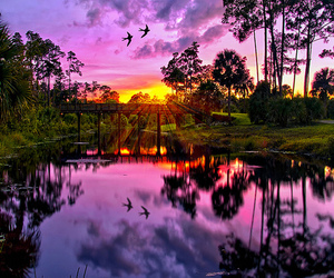 sunset, nature, and purple image