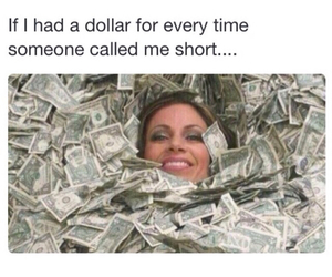 funny, dollar, and money image