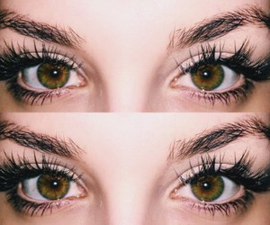 eyes, eyebrows, and green eyes image