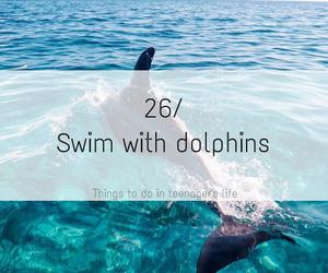 dolphin, sea, and swim image
