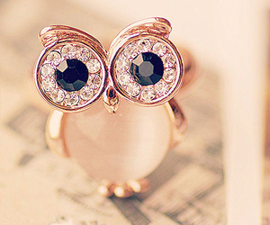 owl, ring, and cute image