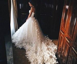 wedding and shuke image