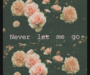 flowers and never let me go image