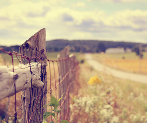 fence, photography, and field image