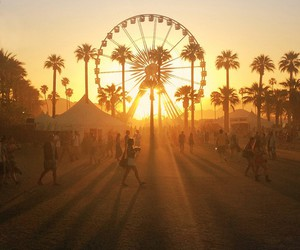 summer, sunset, and coachella image