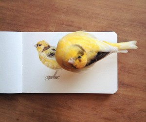 bird, art, and yellow image