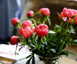 beautiful, elegant, and flowers image