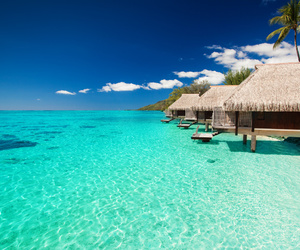 summer, beach, and Maldives image