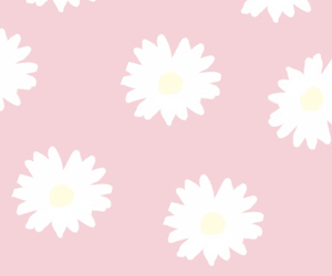background, daisies, and pastel image