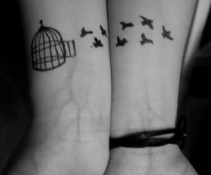 birds, black and white, and meninas image