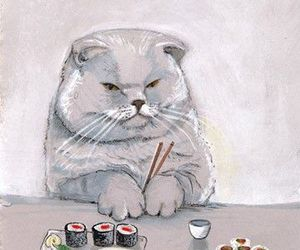 cat, drawing, and sushi image