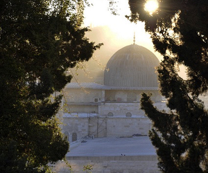 mosque, palestine, and islam image