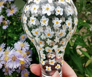 daisy, lamp, and garden image