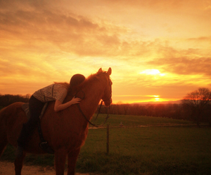 Dream, friends, and horses image
