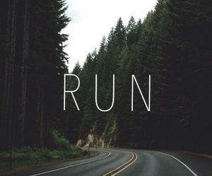 run, wallpaper, and forest image