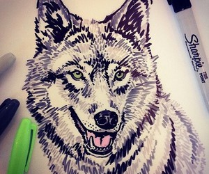 art, nature, and wolf image