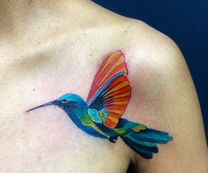 art, hummingbird, and colors image