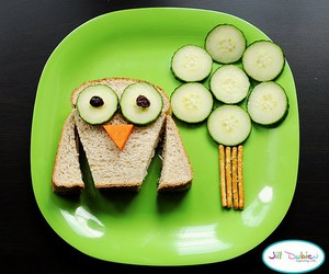 owl and food image
