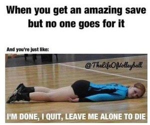 volleyballproblems image