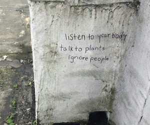 grunge, quotes, and plants image
