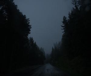 dark, nature, and night image