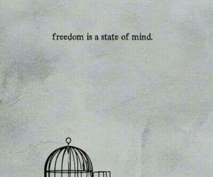 freedom, quotes, and bird image