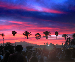 coachella, sunset, and summer image