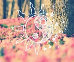beautiful, ying yang, and beauty image