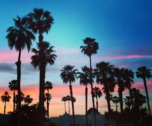 coachella, nature, and summer image