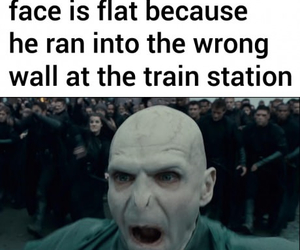 Funny Harry Potter Memes Voldemort : Harry potter vs twilight memes harry potter amino