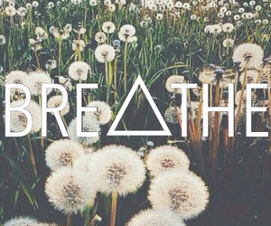 wallpaper, background, and breathe image