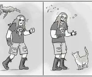 cat, metal, and metalhead image