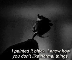 black, american horror story, and ahs image