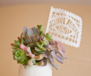 succulent, table, and table setting image