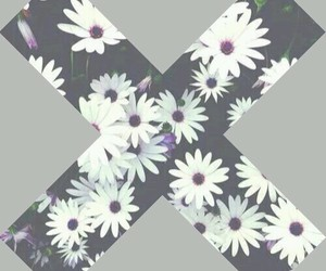 flowers and x image