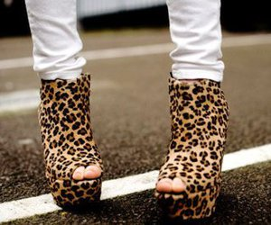 heels, shoes, and leopard image